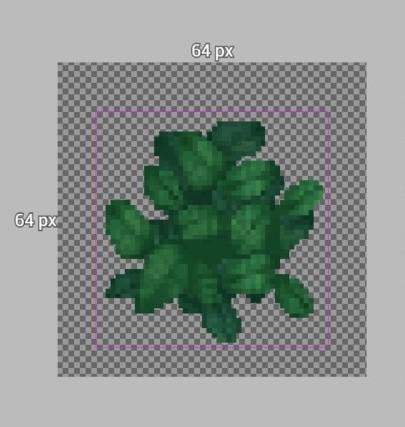 葉の平面図