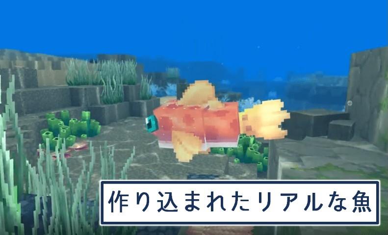 クオリティ高めな魚